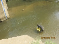 A young man collecting water from under a bridge in Kabarole district